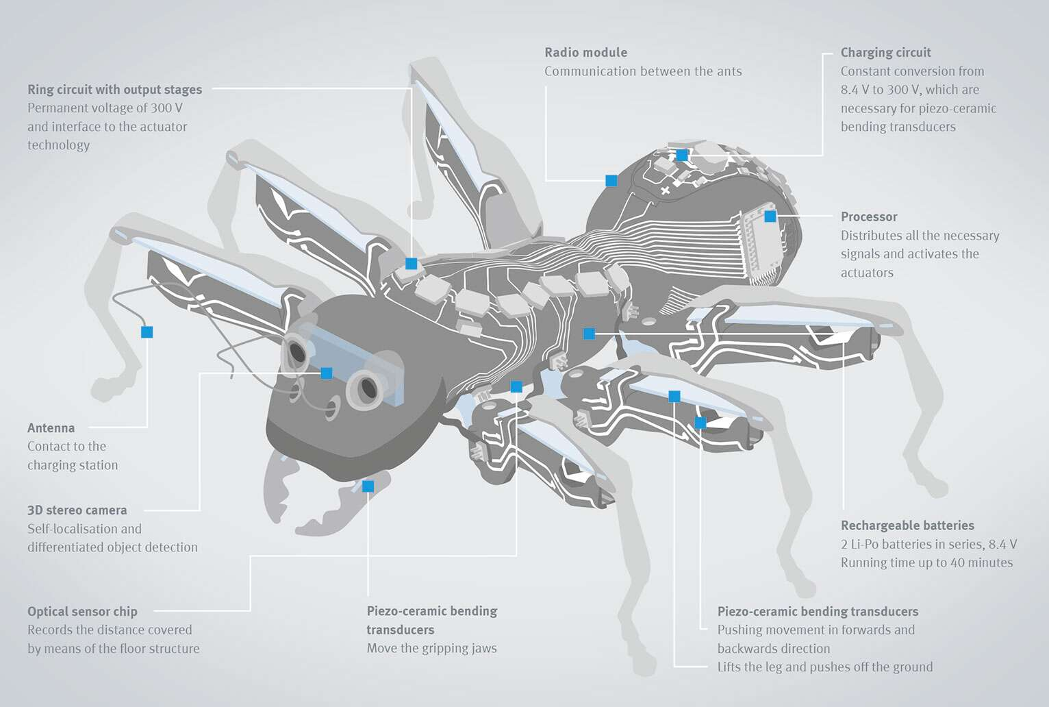 Well-conceived concept: Numerous components, technologies and functions are combined in each ant in the smallest of spaces