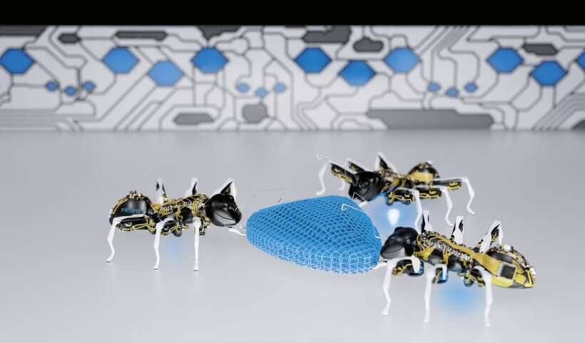 The BionicANTs: cutting-edge technology, development platform and eye-catching solution all in one