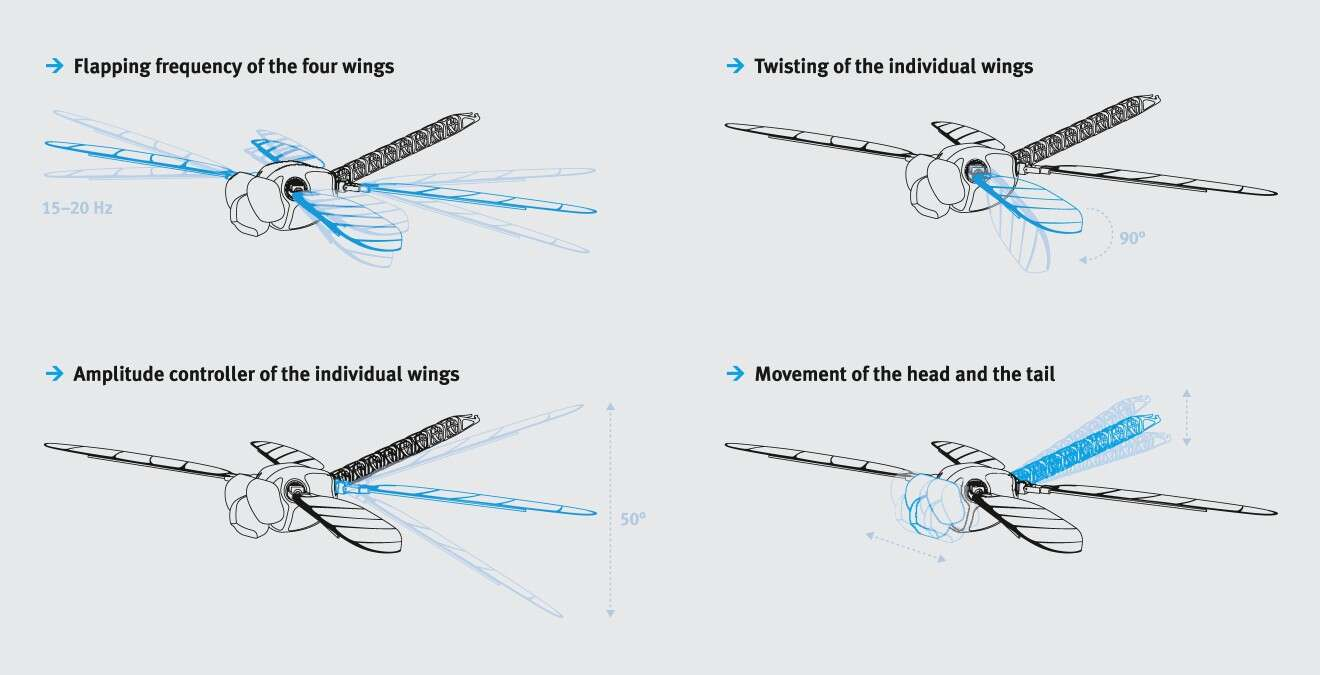 BionicOpter: with the nine degrees of freedom of the wings, each of them can be specifically adjusted and moved