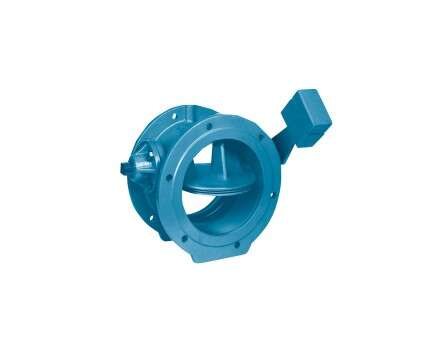 Non-return valve