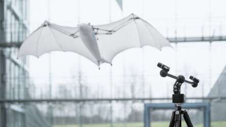 BionicFlyingFox: the moving camera system can follow the flying object dynamically
