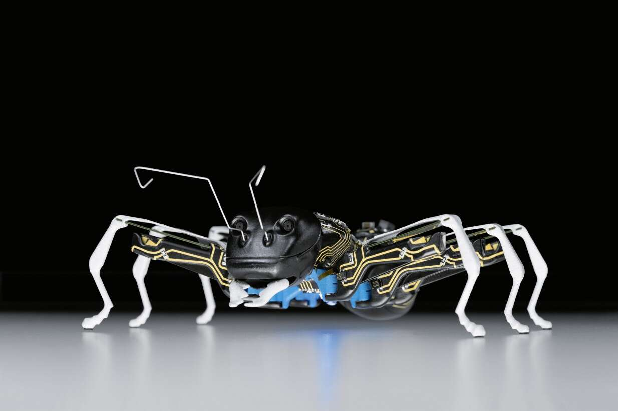 Festo BionicANTs: research showpiece for testing new technologies