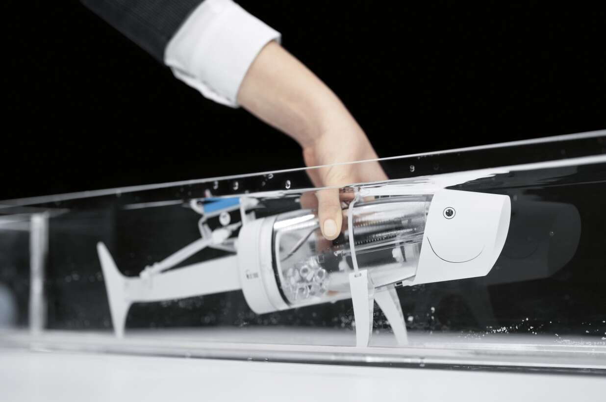 Festo Bionics4Education: bionic fish with Fin Ray Effect® in the tail fin