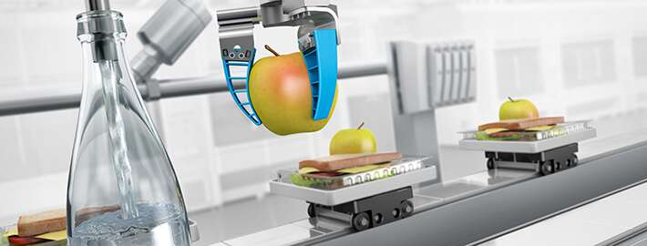 Festo – the competent partner for the food processing and packaging industry